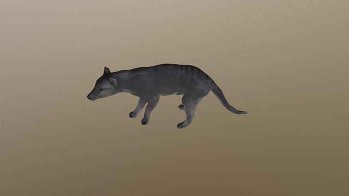 Tasmanian Tiger B Posed 7552 3D Model