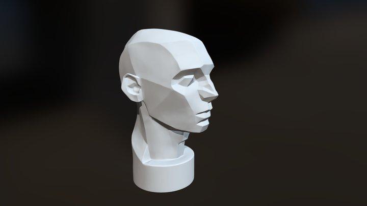 Asaro Head 3D Model