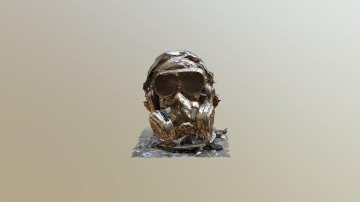 STEAMPUNK   PIRATE 3D Model