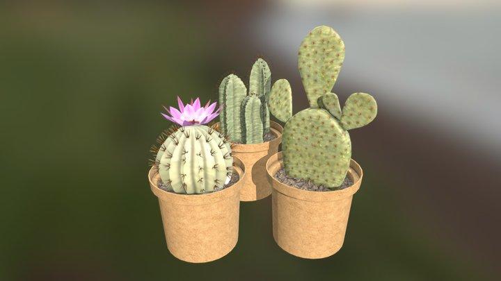 Mini Cactus 3D Model