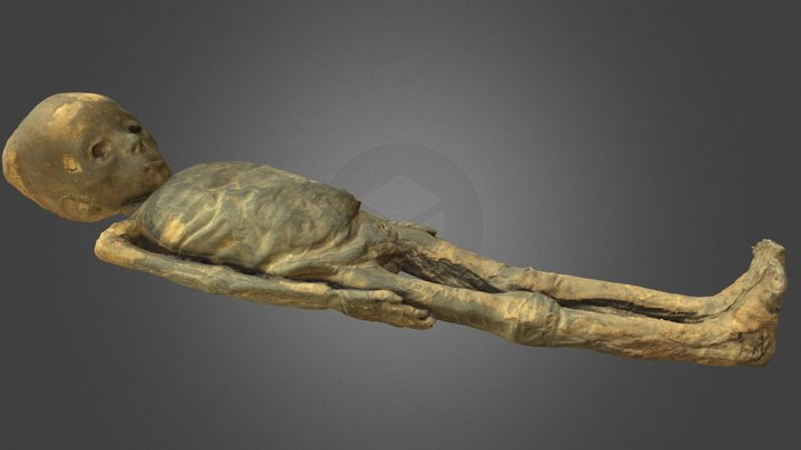 Younger mummy (KMM A 63) 3D Model