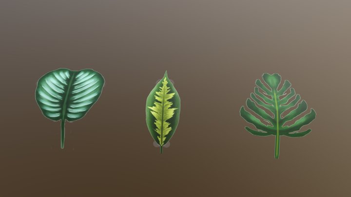 Handpainted plants 3D Model