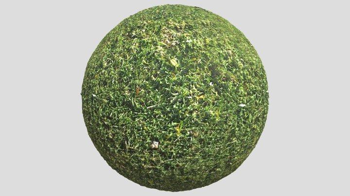 Grass02 3D Model