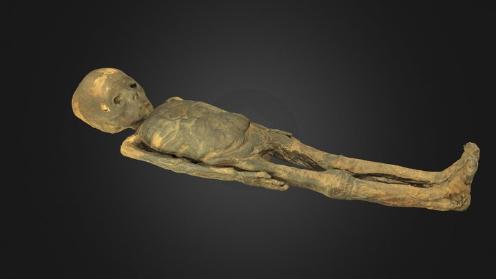 Noorem muumia / Younger mummy 3D Model