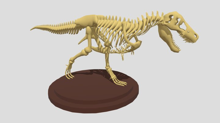 Dinosaurs 3D Model