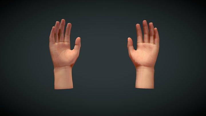 hands animation 3D Model