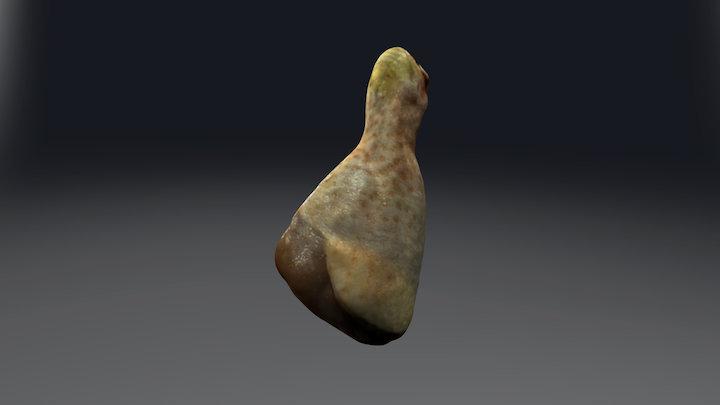 Chicken leg 3D Model