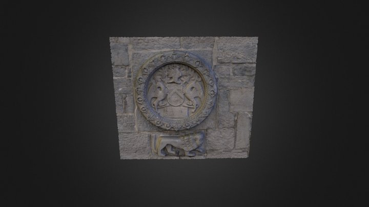 Coat of Arms (Lynch). Lynch's Castle Galway 3D Model