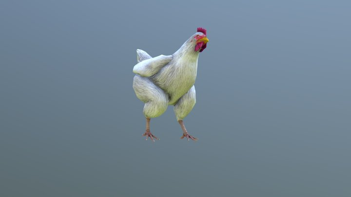Chicken Animated 3D Model