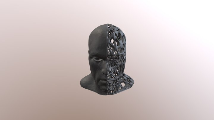 Male Split-Voronoi Head 3D Model