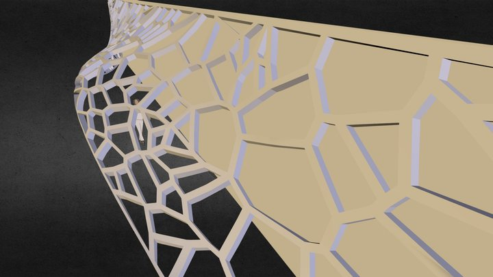 Nappe Voronoi 3D Model