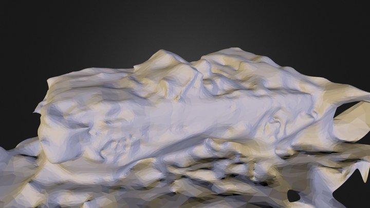 Capture20121122221921.stl 3D Model