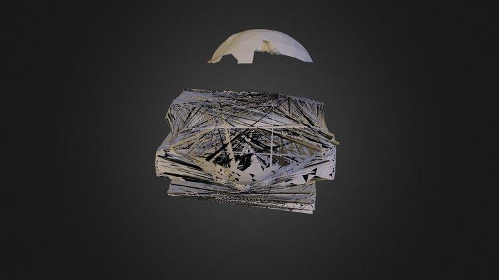 Lomonosov 3D Model