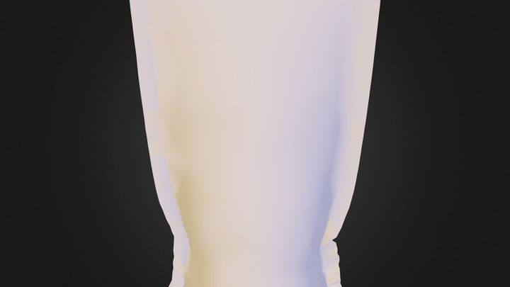 Winebag 3D Model