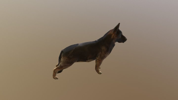Dog B Posed 0003 3D Model