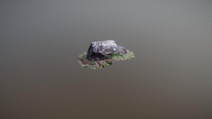 Rock_001 3D scan 3D Model