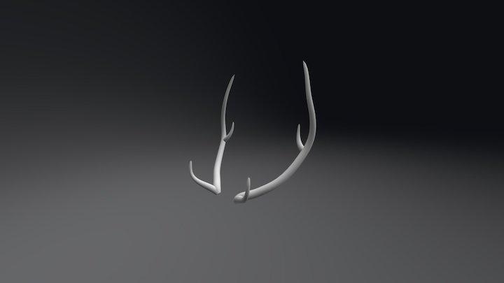 Antlers 3D Model