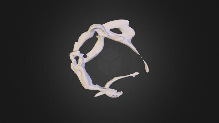 Surfaces 3D Model