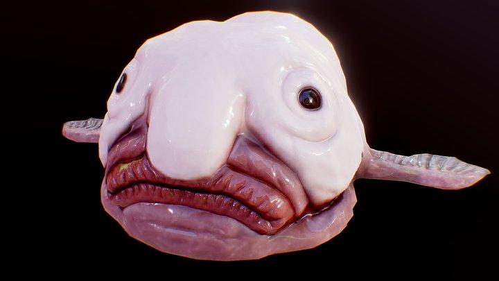 BlobFish 3D Model