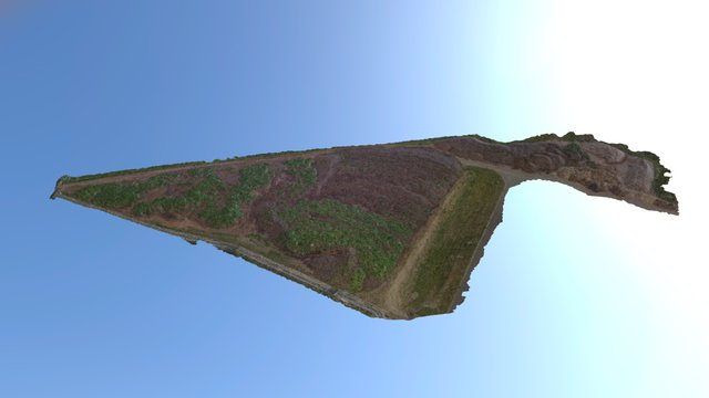 Geländevermessung & Volumenbestimmung 3D Model