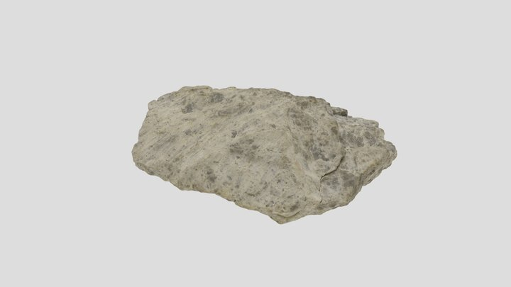 Cataclasite with fault striation 3D Model