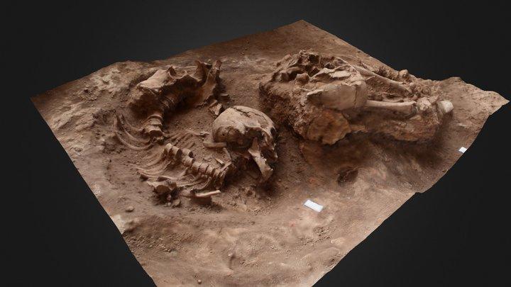 Esqueleto Lapa do Santo 3D Model