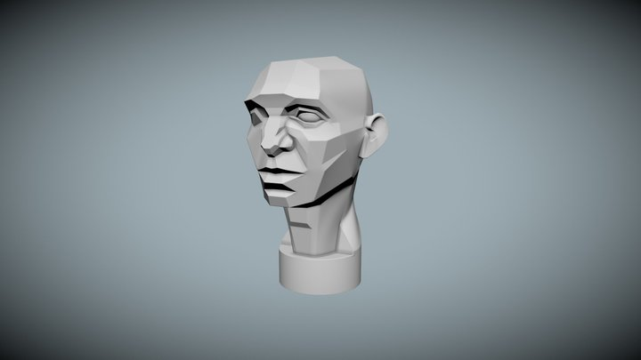 Asaro Head - Planes of the head 3D Model