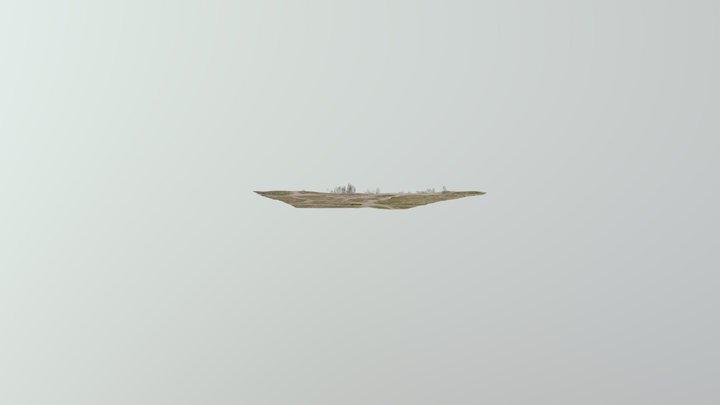 Kerlescan 3D Model