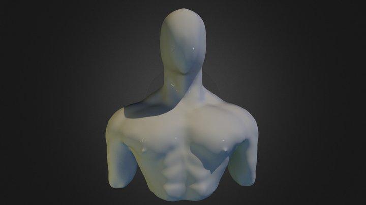 Male Torso Sculpt 3D Model