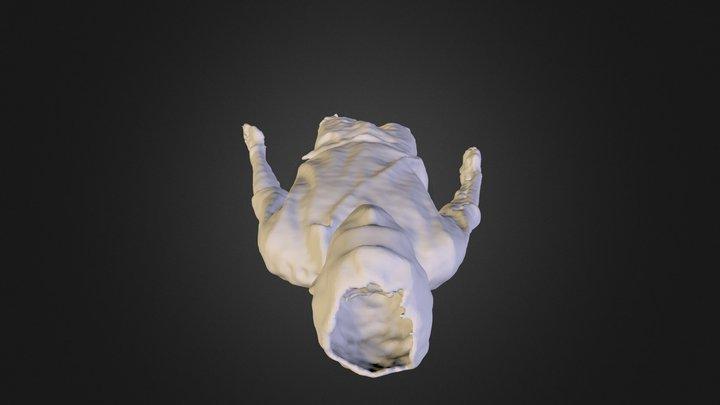 hamzeen 3D Model