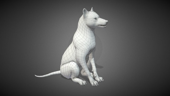 Wolf Base Mesh 3D Model
