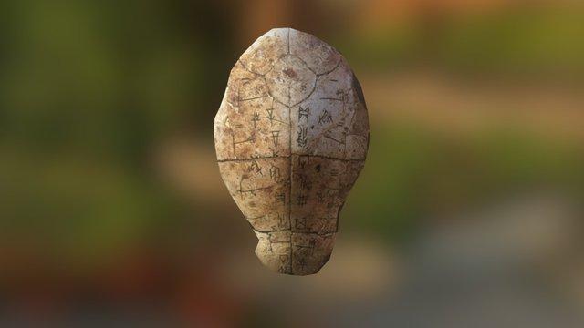 甲骨文 3D Model