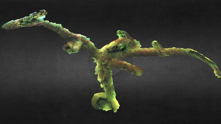 Coombe Reserve Wrecks Underwater Landscape 3D Model