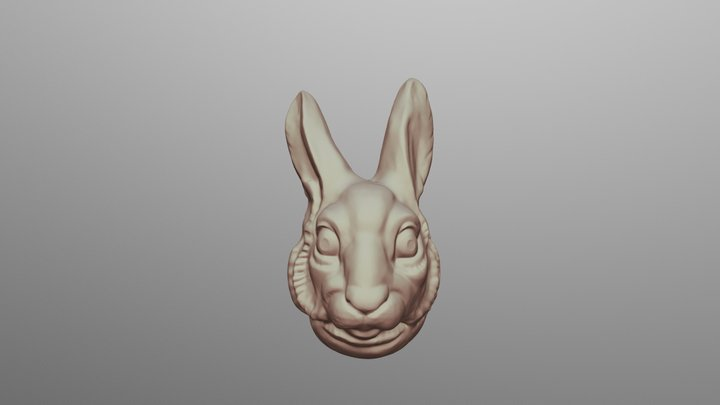 Rabbit Mask Shell 150 3D Model