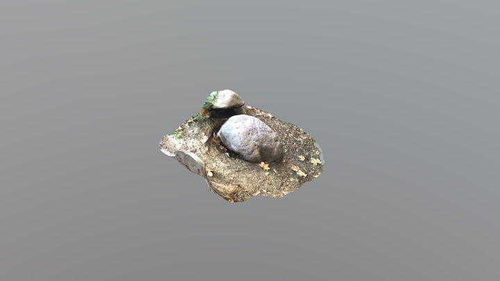 3D scanned rock 3D Model