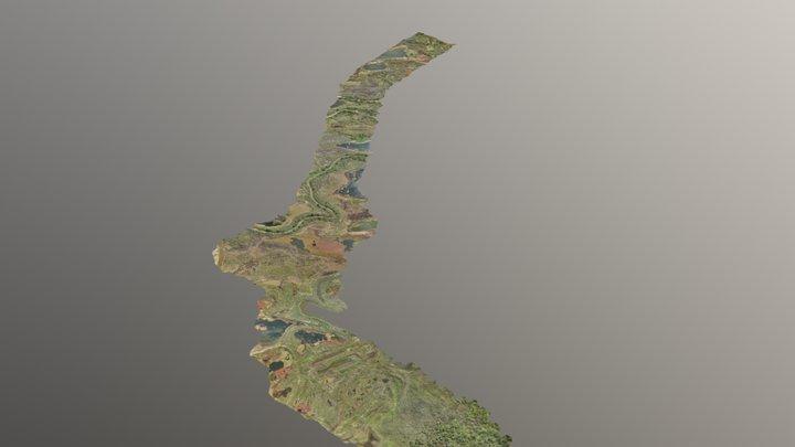 Isla del Río Paraná 3D Model