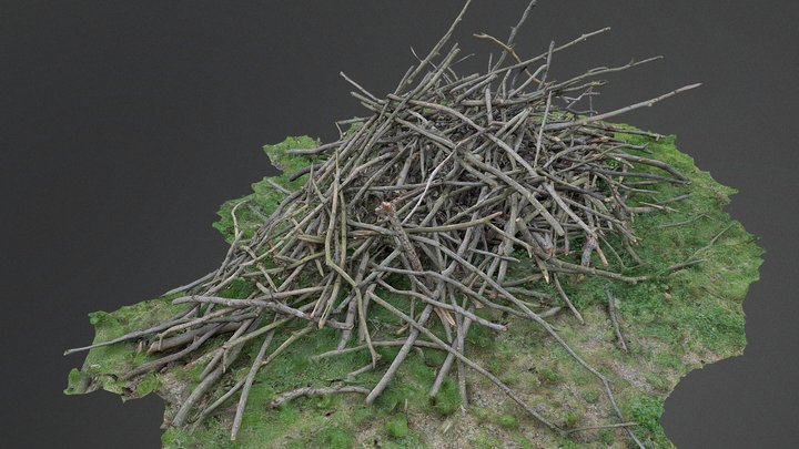 Heap pile of cut tree wood branches stack 3D Model