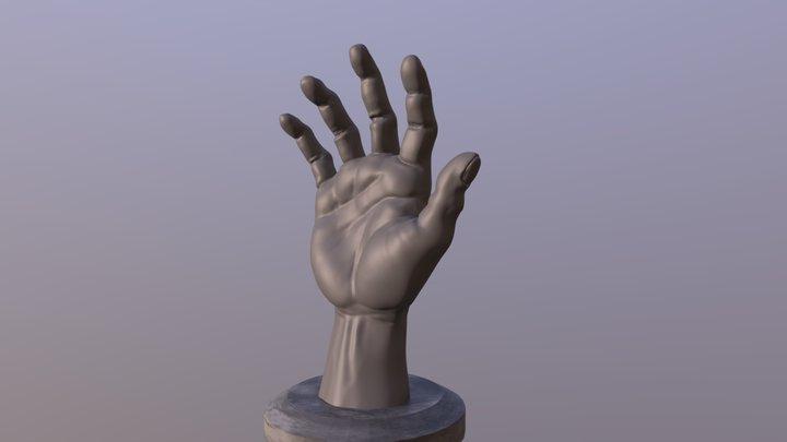 Hand Sculpt 3D Model