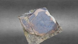 Archaic Utah Lake Rock Art 3D Model