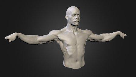 Ripped Man 3D Model