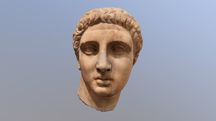 Bust of a young man 3D Model