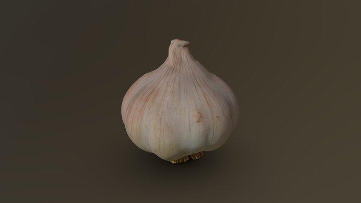 Dried Garlic Head 02 3D Model