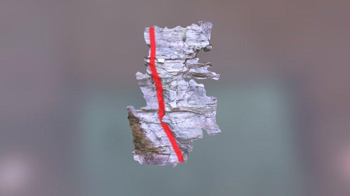 Climbing1-2 3D Model