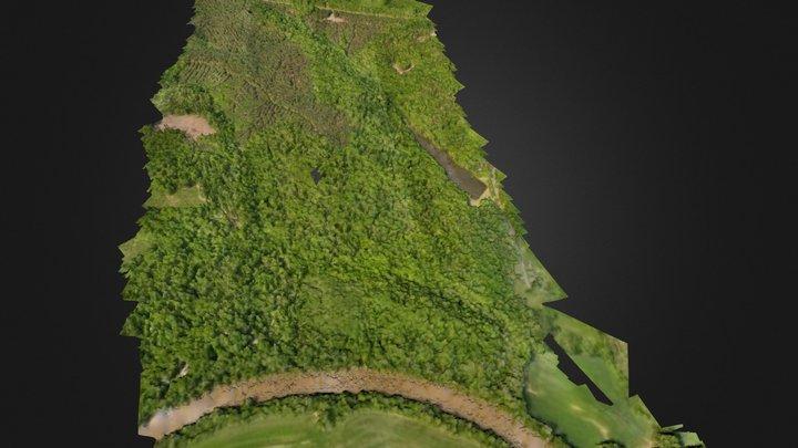 Plantation 3D Model
