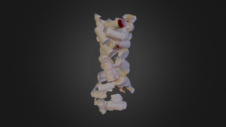 Corks 3D Model