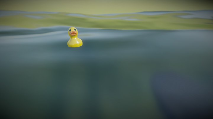 Duck Float Test 3D Model