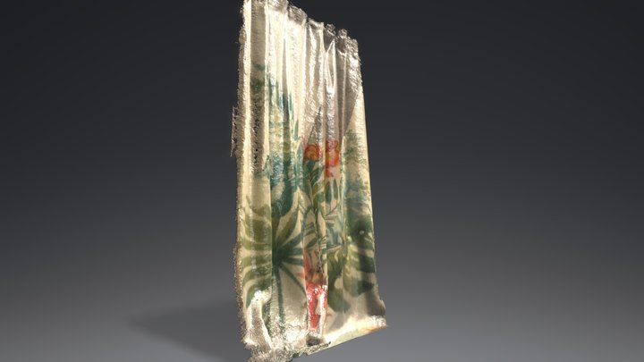 Tropical Shower Curtain 3D Model