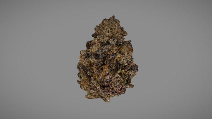 Marijuana Flower (Purple Punch) 3D Model