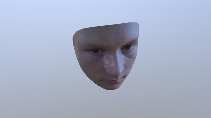 Willt 3D Model