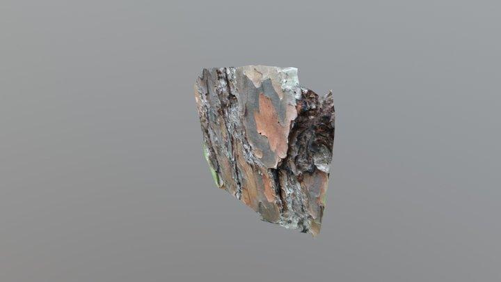 West facing longleaf pine bark 3D Model